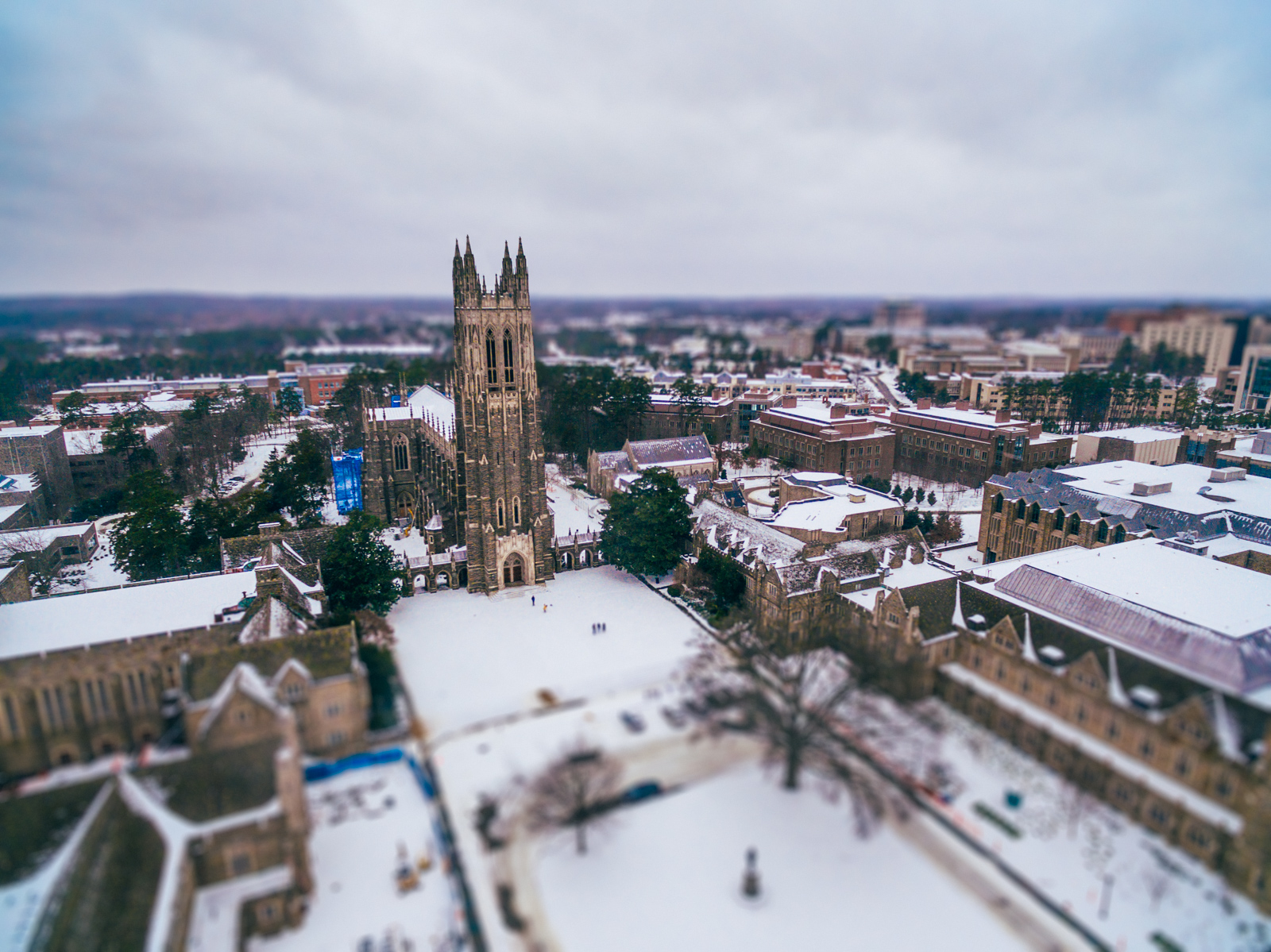 Duke in the snow from overhead